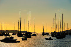 Evening in the harbor royalty free stock image