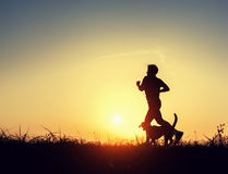 Evening jogging with beagle pet Stock Photography