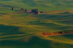 Evening komesa Palouse wzgórza zdjęcie royalty free