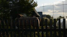 Evening krajobraz dom na wsi zdjęcie wideo