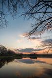 Evening krajobraz nad stawem z drzewami i gałąź Zdjęcia Royalty Free