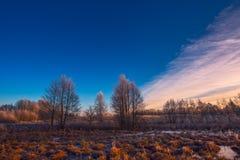 Evening krajobraz z zamarzniętym polem i drzewami zdjęcie stock