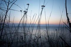 Evening Krajobrazowego morze Fotografia Royalty Free