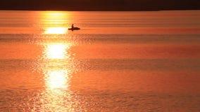 Evening lake fisherman sky stock video footage