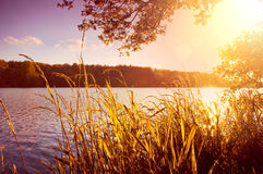 Evening on the lake at summer. Royalty Free Stock Images