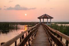 Evening in lake. Sunset on the marsh boardwalks Royalty Free Stock Photos