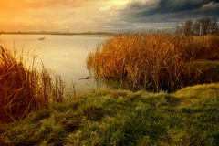 Evening on the lakeside. Evening landscape on the lakeside Stock Photos
