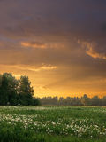 Evening Landscape Royalty Free Stock Photography