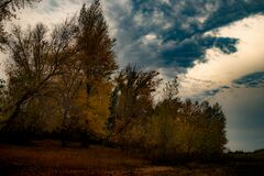 Evening landscape on the autumn bank of the Volga River