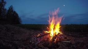 Evening landscape - beautiful campfire on field. 4K stock video footage