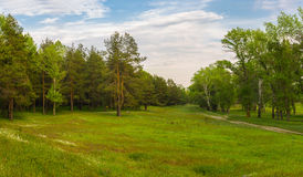 Evening landscape in central Ukraine Royalty Free Stock Photo