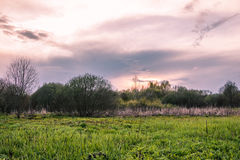 Evening landscape in the field Royalty Free Stock Photos