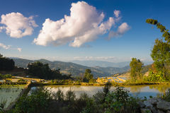 Evening landscape in the rice terraces Stock Photo