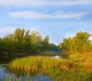 Evening landscape on river stock images