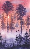 Evening Landscape  with Sunset  and Coniferous Trees. Watercolor painting.  Hand drawn illustration. Evening sunset serenity nature scene with pine and fir trees Royalty Free Stock Photos