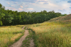 Evening landscape in Ukrainian rural area Royalty Free Stock Photo