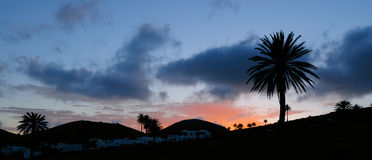 Evening in Lanzarote, Canaries. Evening at Haria, Northern Lanzarote, Canary Islands; palm trees offset against darkening sky; wide lens, long exposure with a Stock Photo