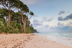 Evening at Laxmanpur Beach, Andaman and Nicobar, India Royalty Free Stock Photos