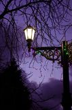 Evening light Royalty Free Stock Photography