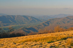 Evening light from a bald mountain. Evening Haze on Gregory Bald looking at Cades Cove in The Smoky Mountains Stock Image