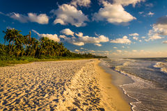 Evening light at the beach in Naples, Florida. Royalty Free Stock Image