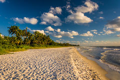 Evening light at the beach in Naples, Florida. Royalty Free Stock Photo