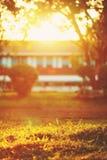 Evening light. royalty free stock photography