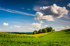 Evening light on a farm field in rural York County, Pennsylvania Stock Images