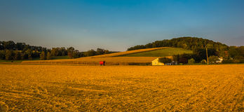 Evening light on farm fields and rolling hills in rural York Cou Stock Photo