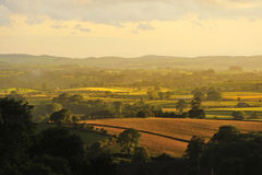 Evening light, North Yorkshire fields Royalty Free Stock Photos