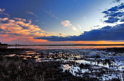 Evening Light over cropped reed beds of the Camargue Stock Photo