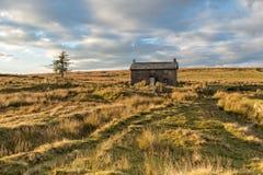 Evening Light Over Dartmoor Stock Photos
