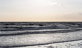 Evening light over the northsea. From the coast of holland Royalty Free Stock Photo