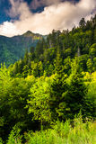 Evening light on the Smokies, seen from an overlook on Newfound Royalty Free Stock Image
