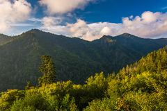 Evening light on the Smokies, seen from an overlook on Newfound Royalty Free Stock Photos