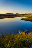 Evening light on a stream and mountains near Tremont, in Acadia Stock Images