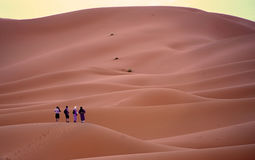 Evening lights on the desert of the ERG in Morocco royalty free stock photos