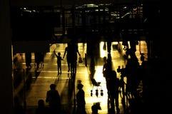 Evening1 fotografia royalty free