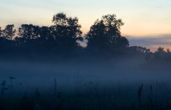 Evening mist. An example of the days when it is rather warm during the day but becomes cold in the evening. That's why such a mist appears Royalty Free Stock Images