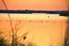Evening mood on the river Okavango, Namibia Royalty Free Stock Image