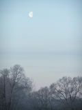 Evening moon Stock Photography