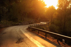 Evening mountain road Stock Image