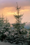 Evening in the mountains Royalty Free Stock Photos
