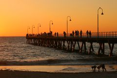 Evening ocean. Evening sunset near to the ocean Royalty Free Stock Image