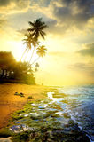 Evening and ocean Royalty Free Stock Photo