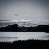 Evening over the lake - Denmark Royalty Free Stock Photo