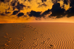 Evening over Sahara desert Royalty Free Stock Images
