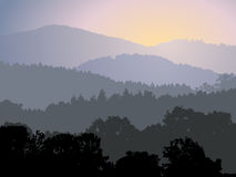Evening panorama. With forest and sun on sky Stock Photos