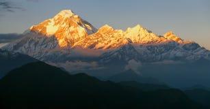 Evening panoramic view of mount Dhaulagiri. Nepal royalty free stock photography
