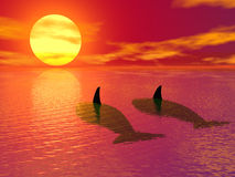 Evening in paradise. (3d images Stock Photo